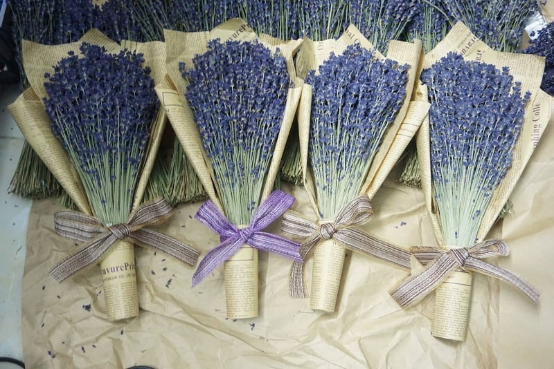 Cách cắm hoa hương lavender