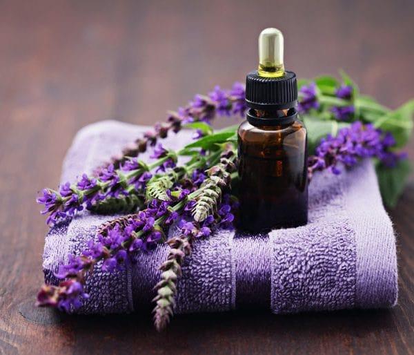 Tinh dầu hoa oải hương có tác dụng gì