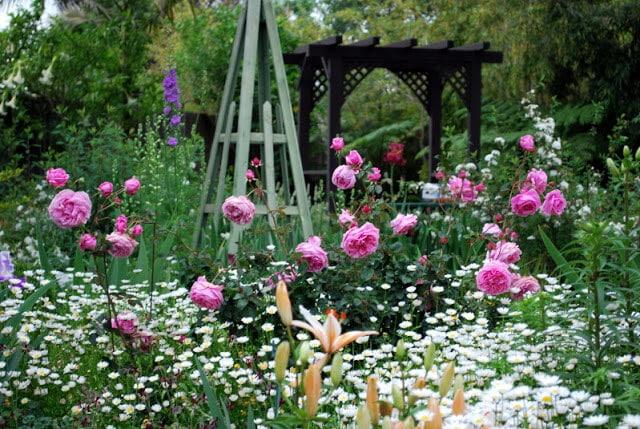 khu vườn Hoa hồng Bishop Castle đẹp ấn tượng