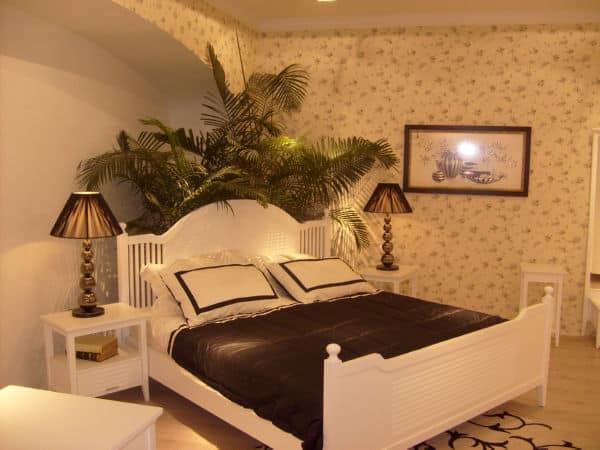 vì sao không nên để cây xanh trong phòng ngủ
