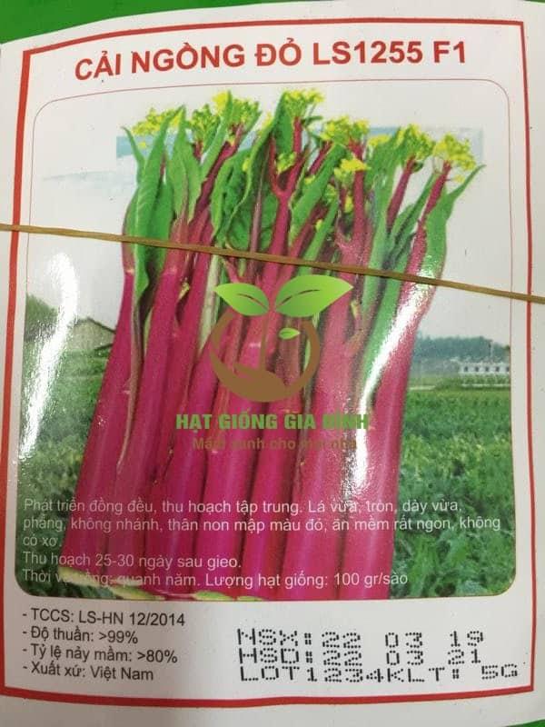 rau cải ngồng thu hoạch đỏ