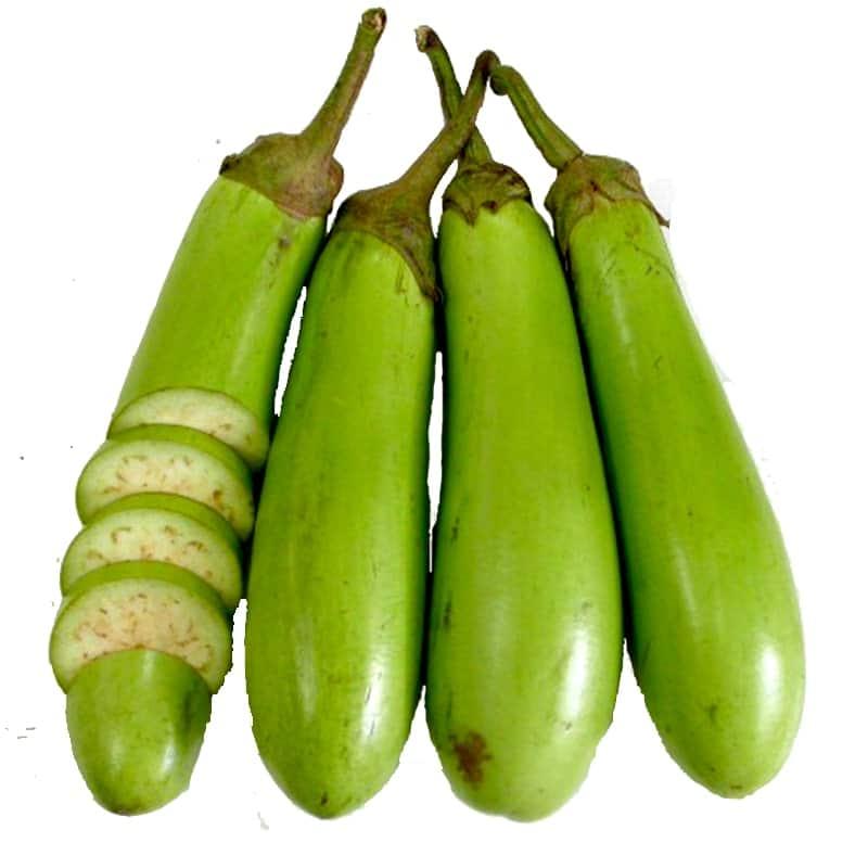 Cách trồng và chăm sóc quả cà xanh lai F1