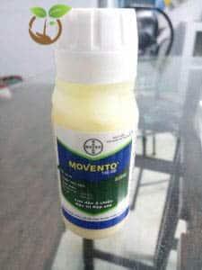 Thuốc trừ sâu Movento 150OD